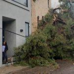 Gobierno del Estado para atender los daños generados de las lluvias por la Onda Tropical número 13.
