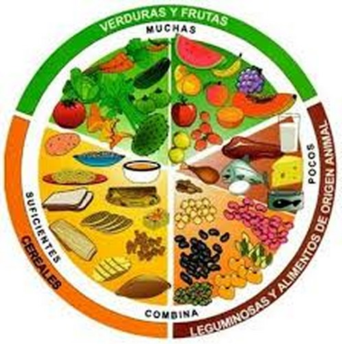 · La comida chatarra, embutidos, alto contenido de azúcar o grasa durante el aislamiento es contraproducente para las defensas naturales del cuerpo
