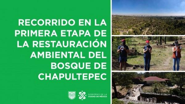"""Bosque de Chapultepec: Naturaleza y Cultura"""""""