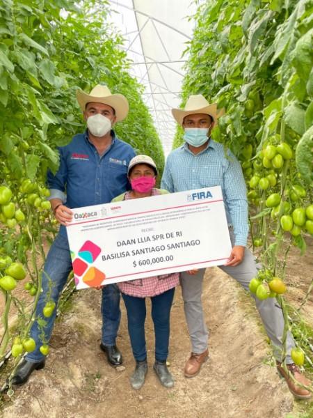 · Financia proyecto de cultivo en invernadero en apoyo a productores de San Pablo Güila